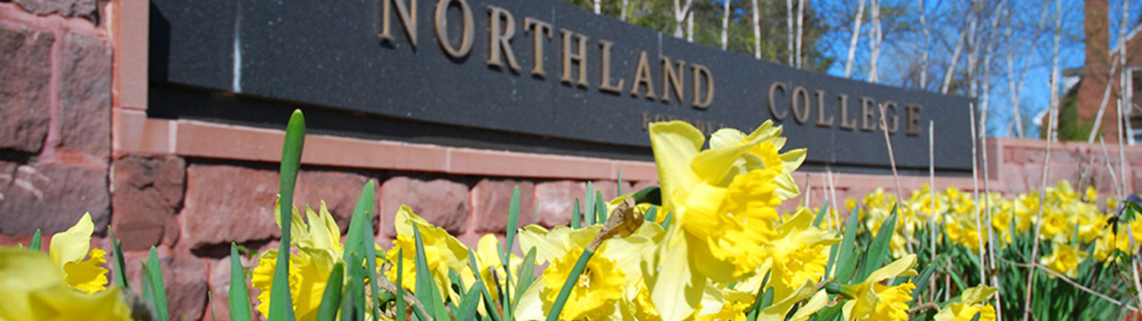 Northland sign in spring
