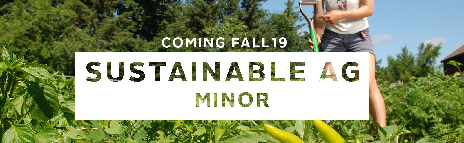 Sustainable Ag Minor