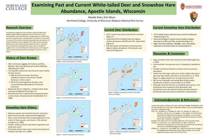 Examining Past and Current White-tailed Deer and Snowshoe Hare Abundance, Apostle Islands, Wisconsin