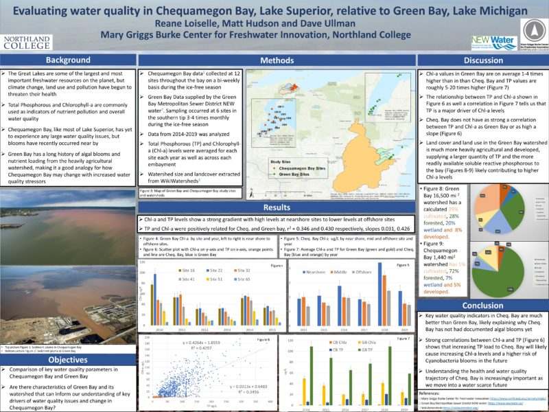 Evaluating water quality in Chequamegon Bay, Lake Superior, relative to Green Bay, Lake Michigan
